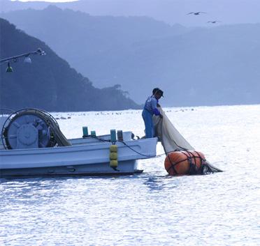 魚付保安林
