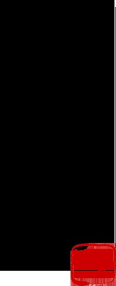 綱元 祇園丸